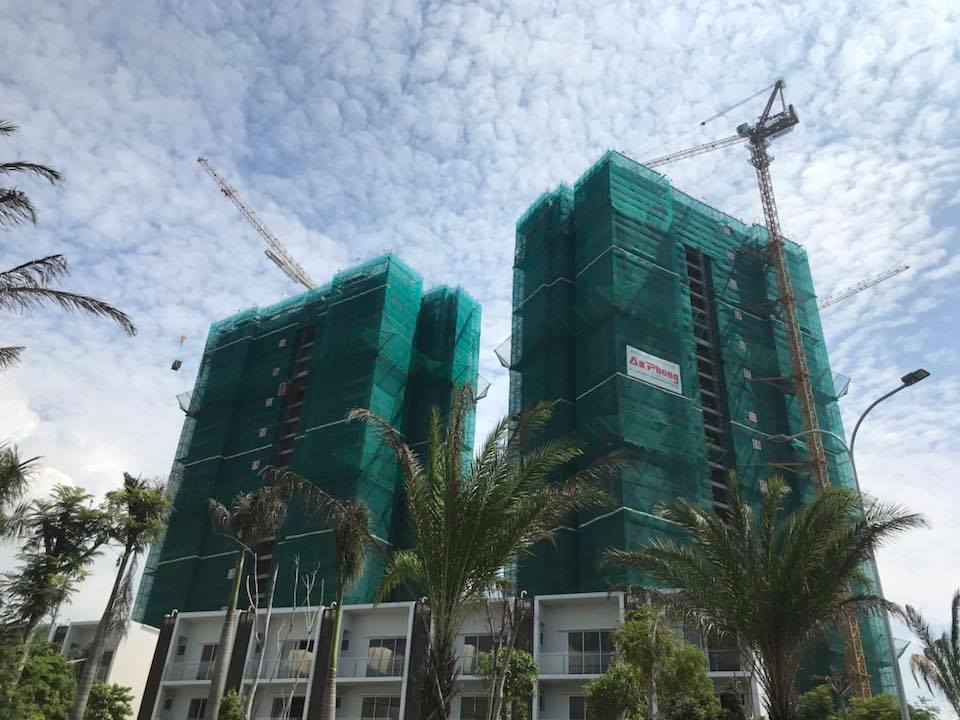 căn hộ chung cư palm heights